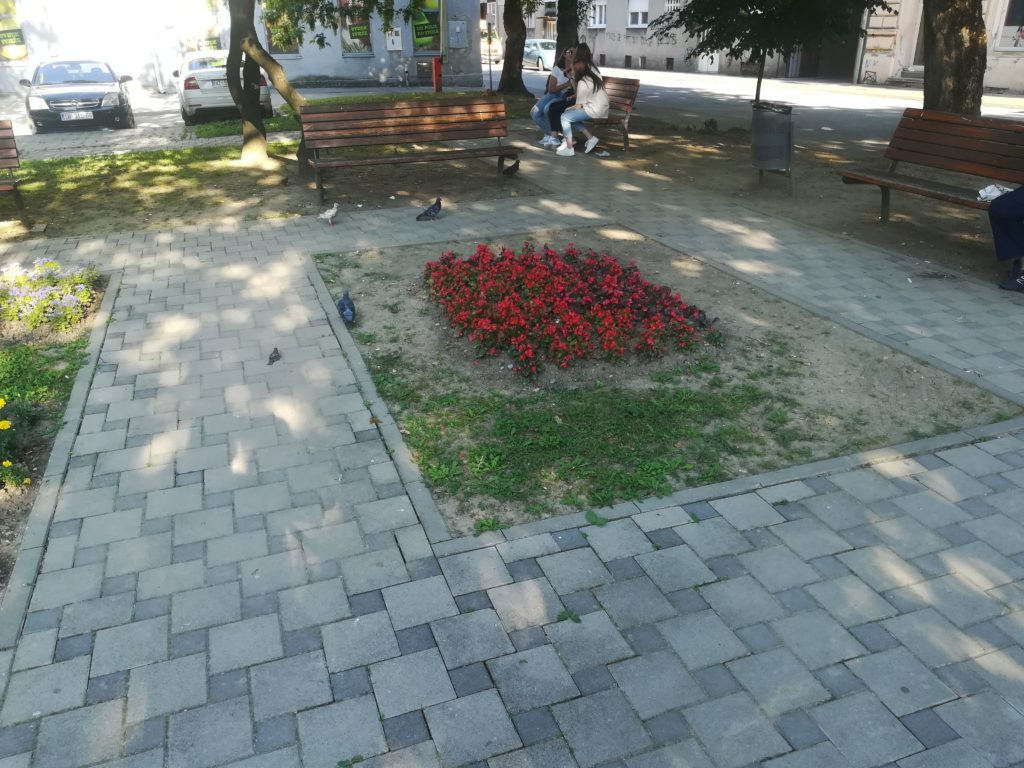 a flower garden in a park, footpaths in the park