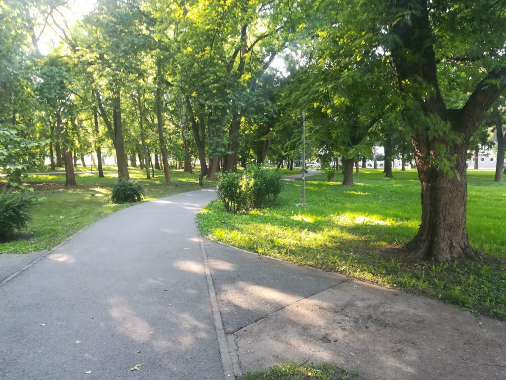 a winding footpath in a park
