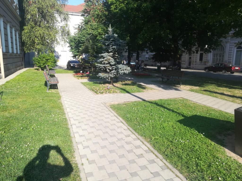 full park, footpaths in a park