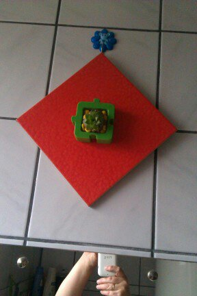 plant ceramic tile