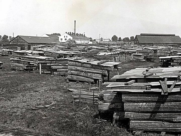 warehouse of wooden logs