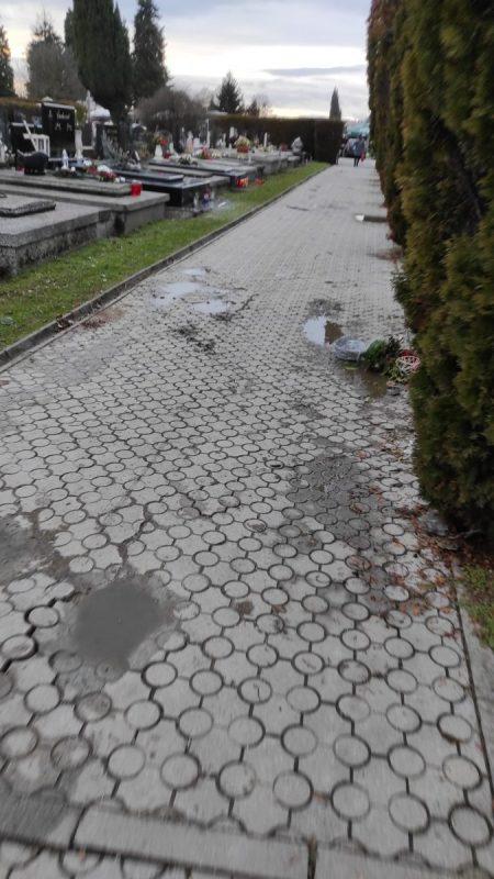 Cemetery-paths1