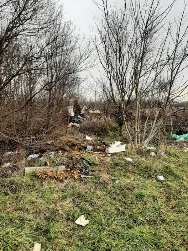 Wild-landfill-waste