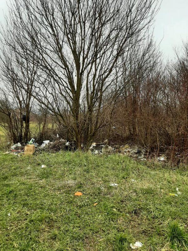 Wild landfills