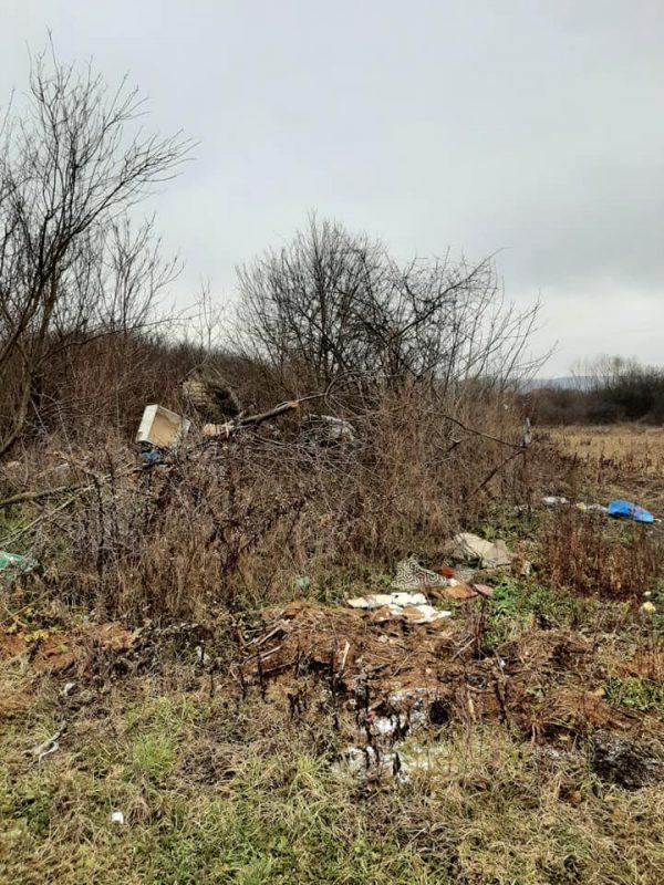 Wild-landfill-waste3