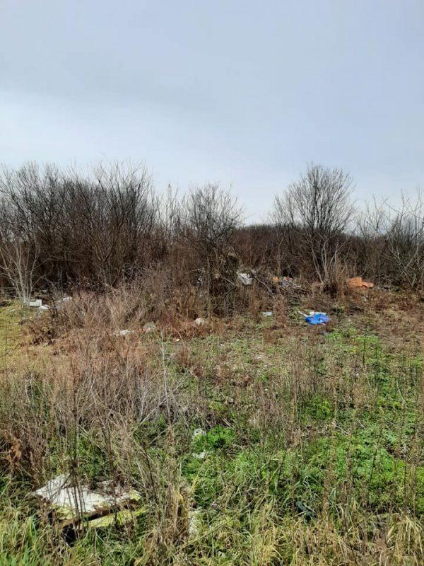 Wild-landfill-waste7