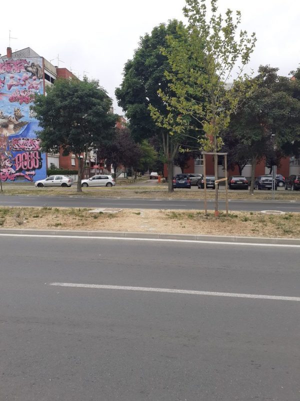 pedestrian crossing-Lidl3